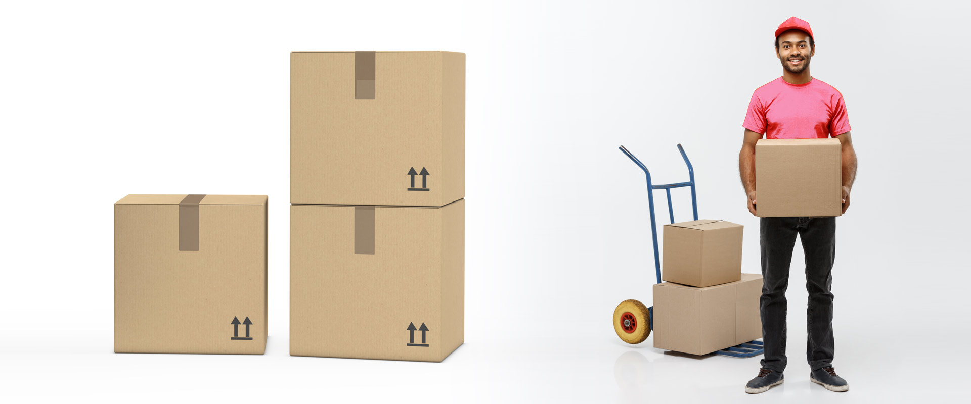The Company Supplying